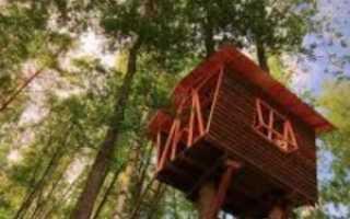 Домик на дереве своими руками — пошаговая инструкция с фото, видео и чертежами