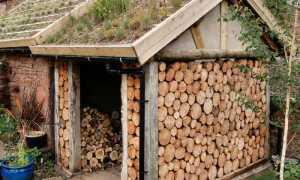 Как построить навес для дров своими руками (фото)
