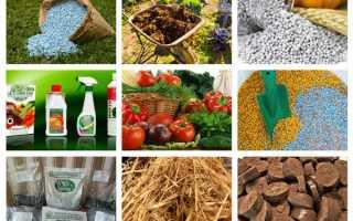 Виды удобрений, их классификация, применение, фото