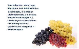 Можно ли поправиться от винограда и стоит ли есть его при похудении?