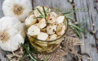 Настой чеснока от вредителей, проверенные рецепты