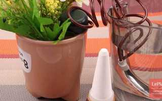 Автополив комнатных растений: ТОП самых покупаемых систем