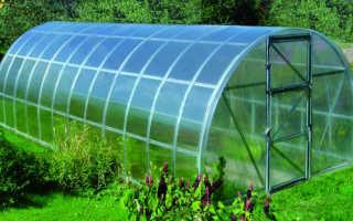 Поликарбонат для теплицы – размеры и цены от производителя