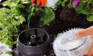 Какие удобрения используются для капельного полива и как проводится подкормка?