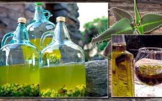 Настойка каланхоэ на водке: применение, от чего помогает лечебное средство