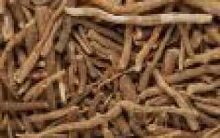 Биологически активная добавка из корня кустарника ашваганды: лечебные свойства, показания и противопоказания