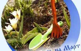 Лунный посевной календарь на март 2020 года для садоводов, огородников, цветоводов (таблица)