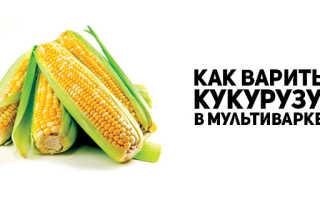 Как сварить кукурузу в мультиварке Поларис: советы по приготовлению и выбору початков