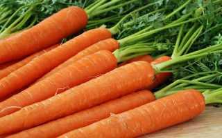 Морковь и поджелудочная железа: можно ли при панкреатите