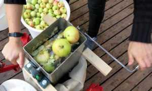 Измельчитель яблок: как сделать электрический вариант своими руками, чертежи самодельной конструкции для сока