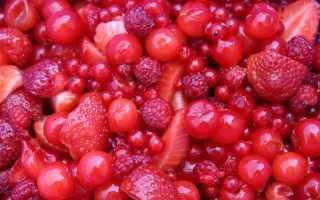 14 краснх ягод: названия и виды, деревья с красными ягодами
