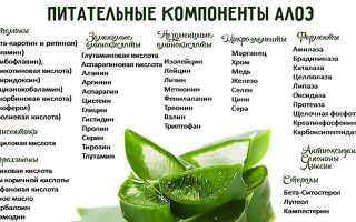 Лосьон из алоэ для лица: лечебные свойства, рейтинг брендов, рецепты
