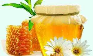 Лечение медом: Что и каким медом можно лечить