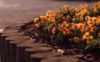 Садовый бордюр – 100 фото необычных бордюров из подручных материалов