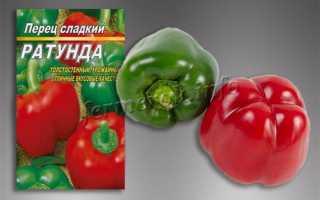Перец ратунда: описание сорта, фото, выращивание в теплице