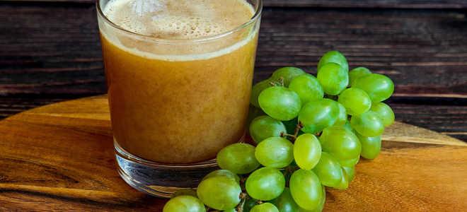 Виноград: ягода или фрукт, полезные свойства и состав, применение плодов и косточек в различных отраслях