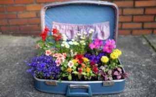 Кашпо для комнатных цветов своими руками: мастер-классы и фото
