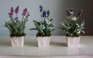 Какие цветы нельзя держать дома – почему нельзя выращивать дома и приметы